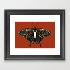 swallowtail butterfly terracotta Framed Art Print