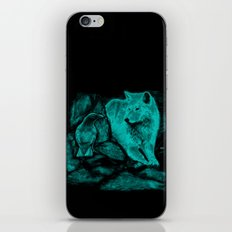 Wolf and Raven in the Night iPhone & iPod Skin