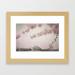 Washington DC Cherry Blossoms Framed Art Print