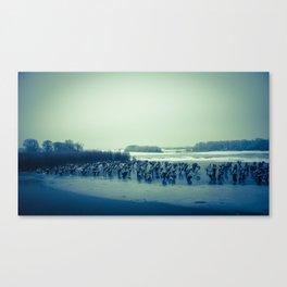 Waardenburg, Icy river forelands (WALND3837) Canvas Print