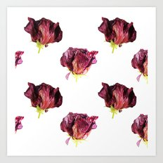 Dead blossom Art Print
