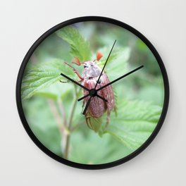 Lovely Chafer Wall Clock
