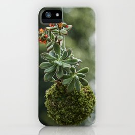decorative succulent plant hanging in the garden iPhone Case