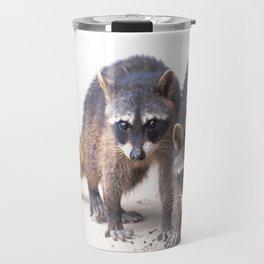 Cute wild Racoons in Costa Rica Travel Mug