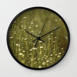 Dasies Wall Clock