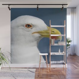Seagull up close Wall Mural