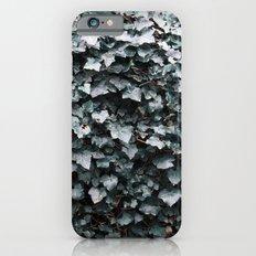Ivy iPhone 6s Slim Case