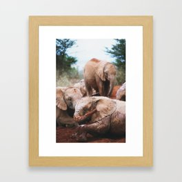 Baby elephants Framed Art Print