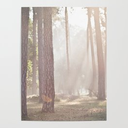 on a misty morning Poster