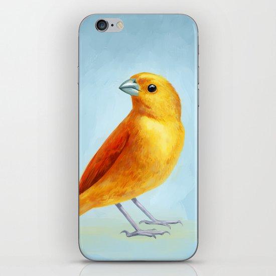 Wild Canary iPhone & iPod Skin
