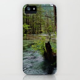 Marsh iPhone Case