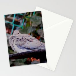 Sweet mourning dove Stationery Cards