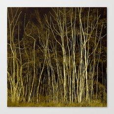 ARBRES Canvas Print