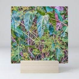 Budding in the rainforest Mini Art Print