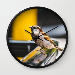 Summer Sidewalk Nature Bird. Photograph Wall Clock