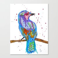 coco Canvas Prints featuring coco by Laurie Art Gallery