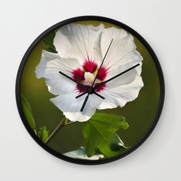 Rose of Sharon Flower Wall Clock