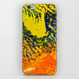 Great Barrier iPhone Skin