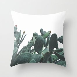 Fruit Cactus Desert Throw Pillow