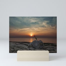 Flatrocks Sunset 2 Mini Art Print
