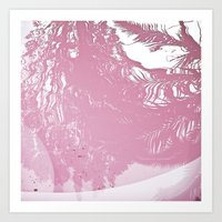 Reflected Pink Art Print