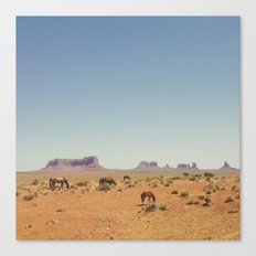 Grazing The Desert Canvas Print