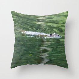 Beaver on an Evening Swim Throw Pillow
