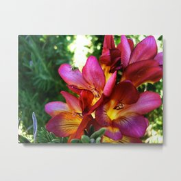 Bright flower cluster Metal Print