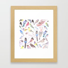 Birds of America- pets and wild birds in stained glass Framed Art Print