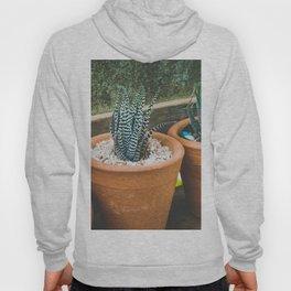 Exotic Plant Hoody