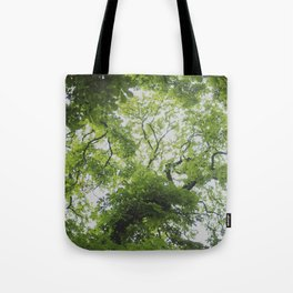 Up in the Trees Above Tote Bag