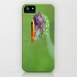 Point Virgule iPhone Case