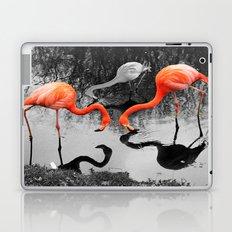 Matthew Cole Photography Laptop & iPad Skin