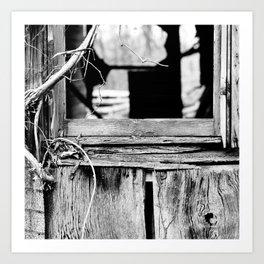 Old House 001 Art Print