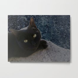Cat arriving from space Metal Print