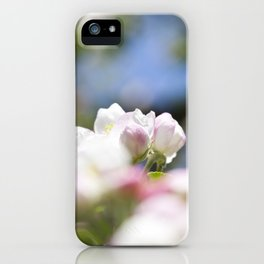 Spring apple tree iPhone Case