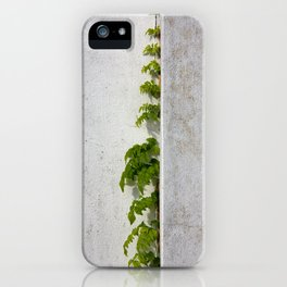 Wisteria climbing white plastered wall iPhone Case
