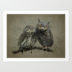 Little owl's background Art Print