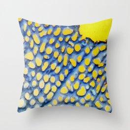 Blue n' Gold Throw Pillow