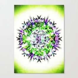 HASI Mandala Canvas Print