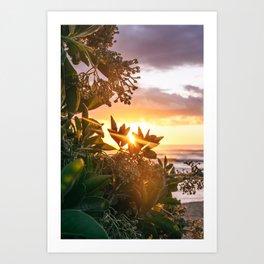 Kauai Hawaii Sunrise | Tropical Beach Nature Ocean Coastal Travel Photography Print Art Print