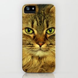 Tootles iPhone Case