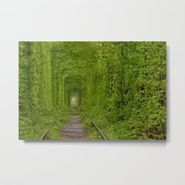 Inside The Tunnel Of Love Metal Print