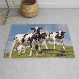 Young Holstein cows Rug