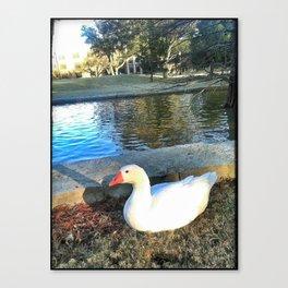 Goose Scene Canvas Print