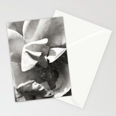 Black & White Rose Stationery Cards