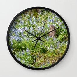 Marmot and wild flowers at Mount Rainier Wall Clock