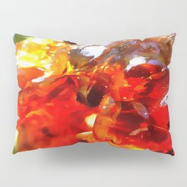 Apricot Resin Abstract Pillow Sham