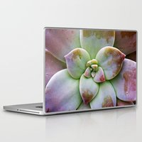 succulent Laptop & iPad Skins featuring Succulent by Lindsay Faye