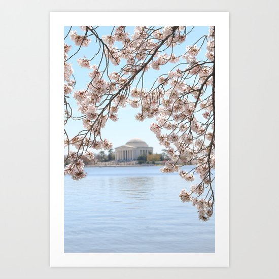 Cherry Blossoms in Washington, DC Art Print